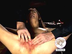 Young pussy stretched and whipped