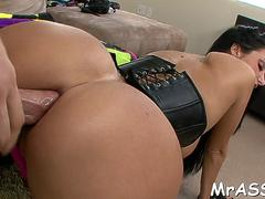 Sinful housewife ava addams with round tits rules the world