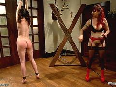 Little bound lesbian whipped by MILF